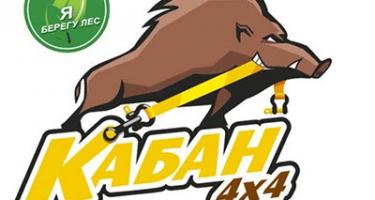 24 февраля 2018 г. Кабаньи бега - зима 2018 - Финал кубка (Московская область)